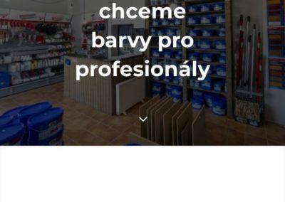 Reference: Barvy pro profesionály